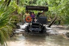 billie-swamp-safari